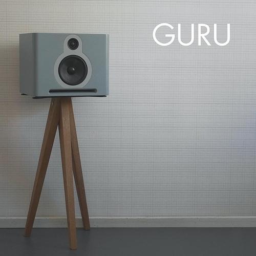guru-pro-audio-q10-monitorspeakers_22785_2