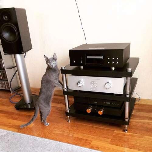 Стойка 3х нога, кошка
