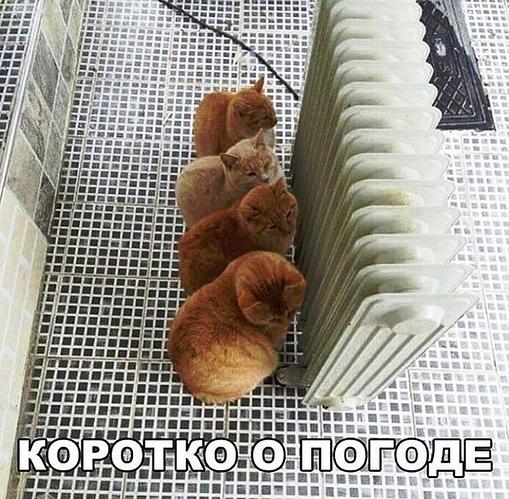 jumor_na_raznye_temy_29_foto_12