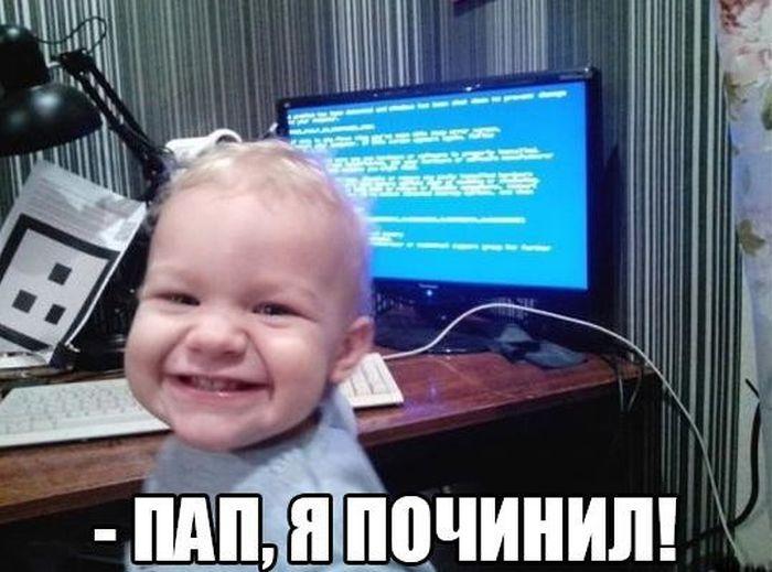 1463571568_podborkt