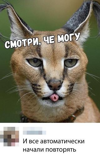 fotopodborka_ponedelnika_41_foto_18